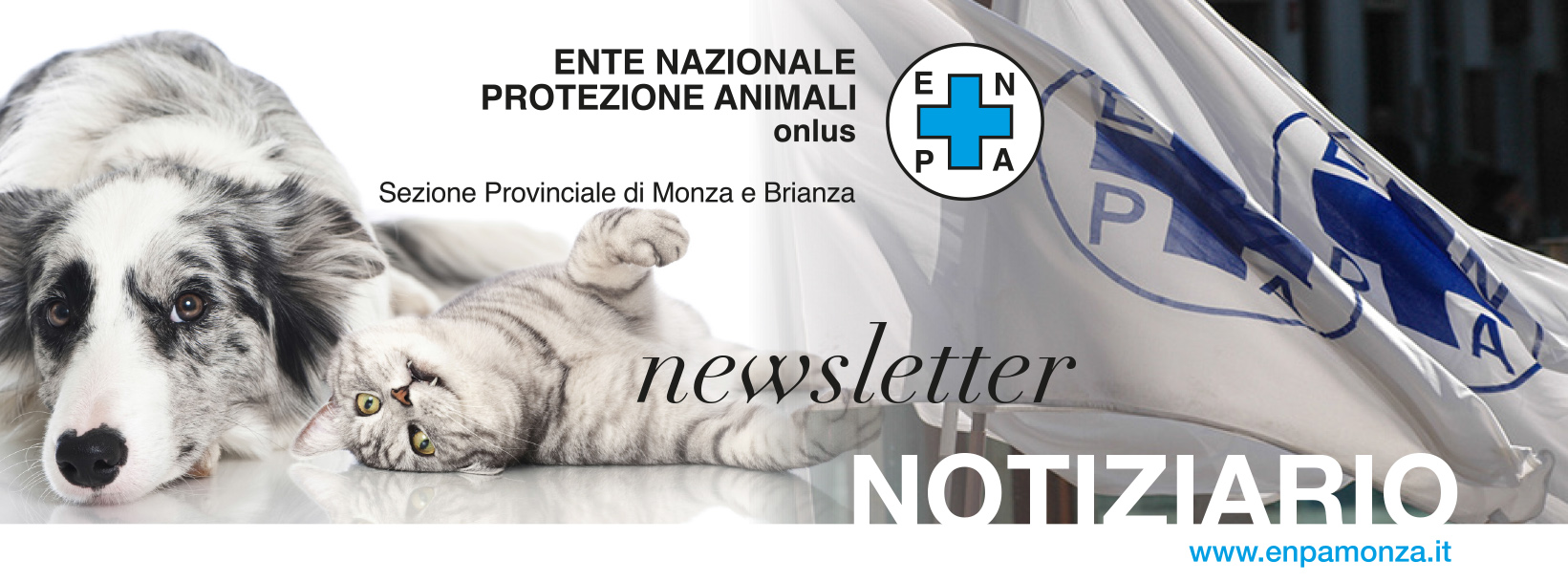 HEADER NEWSLETTER enpa