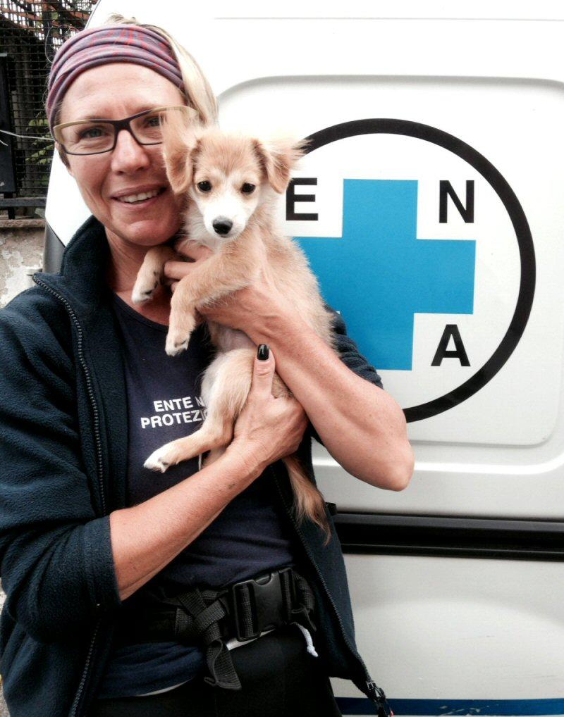 NS cane Guia con volontaria
