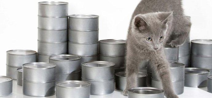 Auchan di Cinisello: banco alimentare a favore del gattile di Monza