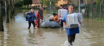 EVIDENZ-mondo-gatto-alluvione