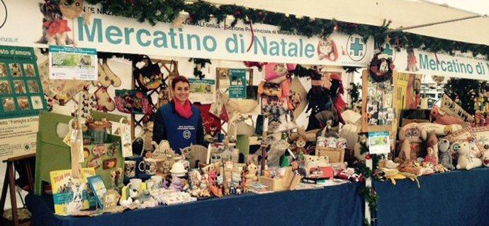 Il mercatino di Natale a Monza!