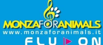 evidenza-new banner mfa 2014
