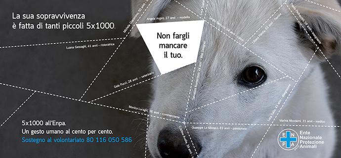 Campagna 5x1000