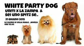 ns-white party