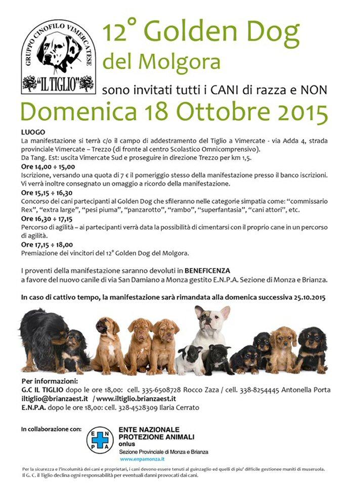 sito-volantino golden dog 2015