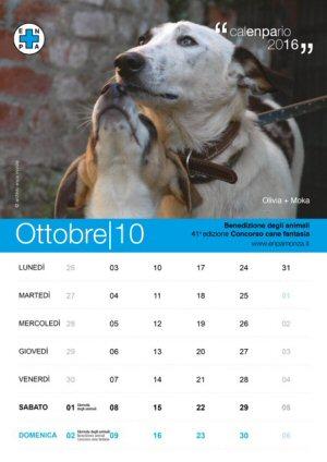 NS-calendario-4