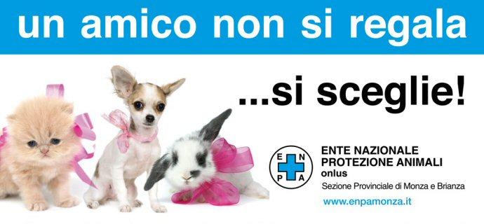 Non comprate un cucciolo, adotta un cane in canile!!