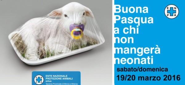 Banco Pasquale a Monza, sabato e domenica.