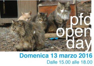 pfd-open day-gatti-NS
