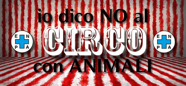 Il circo di nuovo a Monza: ci risiamo!