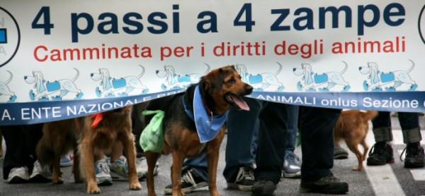 """Domenica 15 maggio torna la """"4 Passi a 4 Zampe"""""""