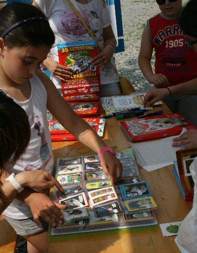 scambijo-NS-2015-06-06 14.49.41