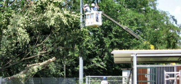Maltempo: giù alberi e cavo elettrico