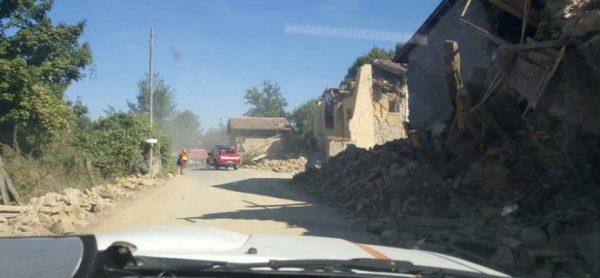 Terremoto: centro raccolta cibo al canile di Monza