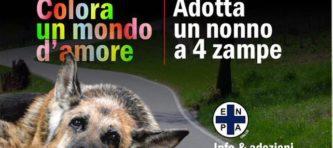 evidenza_locandina-20545_n