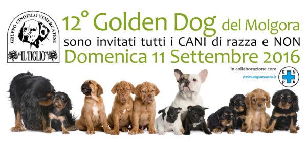 Golden Dog, domenica 11 settembre