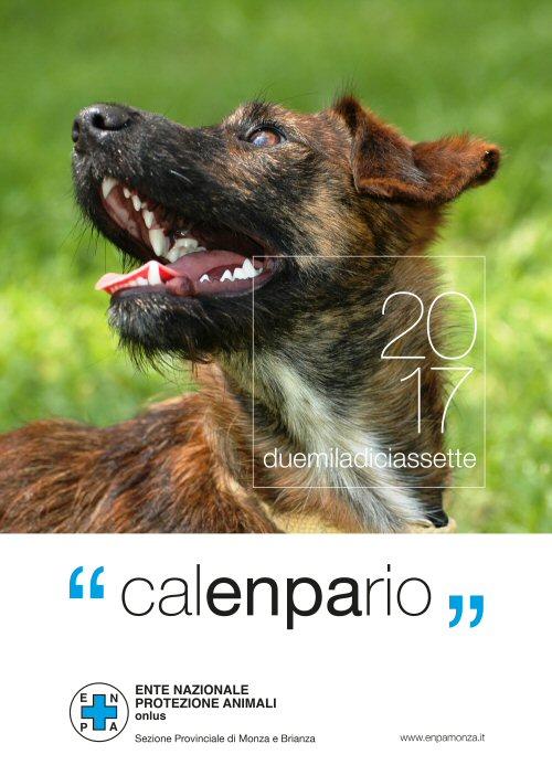 ns_calendario-muro-2017