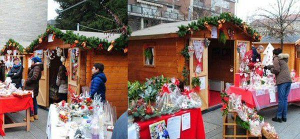 ENPA al mercatino natalizio di Lissone!