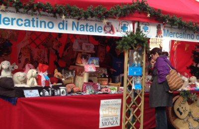 ns_mercatino-2015-fb-wa0014