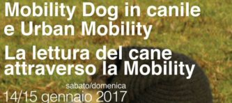 evidenza-locandina-seminario_2017_1-vitalini