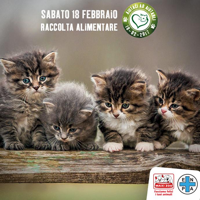 690-raccolta_alimentare_Enpa_Maxi-Zoo_gatti