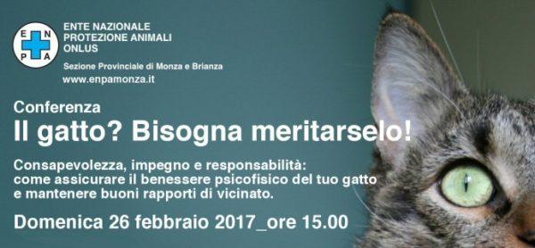 Il gatto? Bisogna meritarselo! Conferenza domenica 26 febbraio al canile-gattile di Monza.