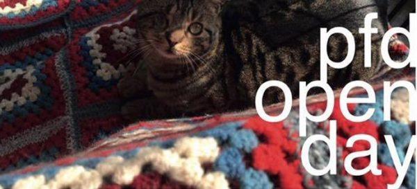 Open day: il 12 marzo gli animali in adozione a distanza vi aspettano!