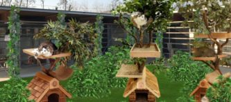 giardino dei gatti-rendering_EVIDENZA-6827