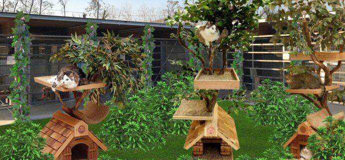 Una vita migliore ecco l app per creare un giardino su for Creare un giardino semplice