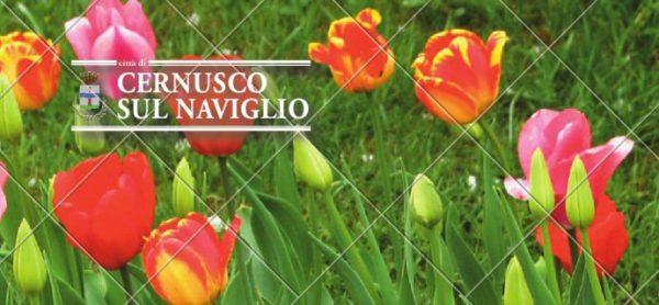 Una domenica alla Fiera di Cernusco! Il 19 marzo ENPA è ospite alla Fiera di San Giuseppe.