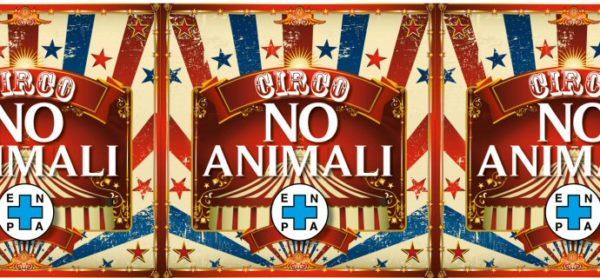Evento su Facebook: Diamo voce ai più deboli! Cambia il tuo profilo per dire no al circo con gli animali