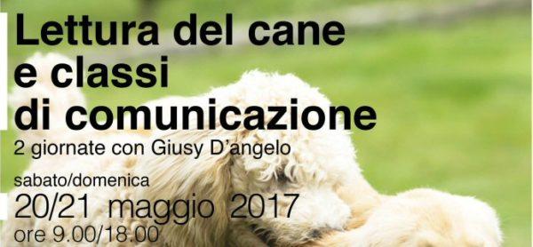 Leggere per comunicare. Seminario a Monza, 20/21 maggio.