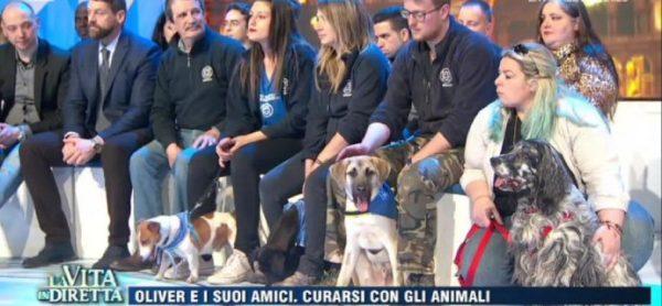 I cani del canile di Monza di nuovo in TV!