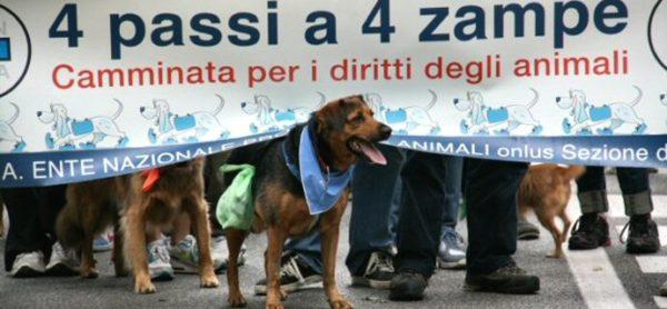"""Domenica 21 maggio torna la """"4 Passi a 4 Zampe"""" al Parco di Monza"""