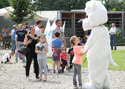 Domenica 11 Giugno Festa Degli Amici Cucciolotti Rifugi