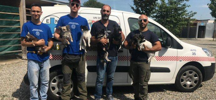 EVIDENZA-volontari con cani_6059
