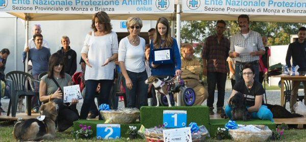 Giornate degli Animali 7/8 ottobre: banco in centro Monza sabato e Benedizione degli Animali domenica.