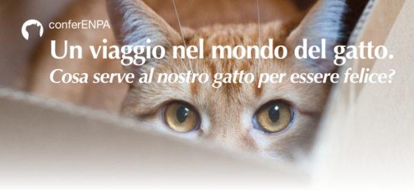 Un viaggio nel mondo del gatto. Conferenza con Laura Borromeo, venerdì 16 febbraio a Monza.