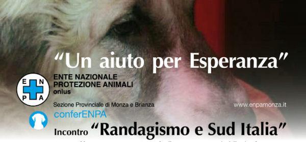 Randagismo nel Sud Italia, una conferenza per saperne di più.