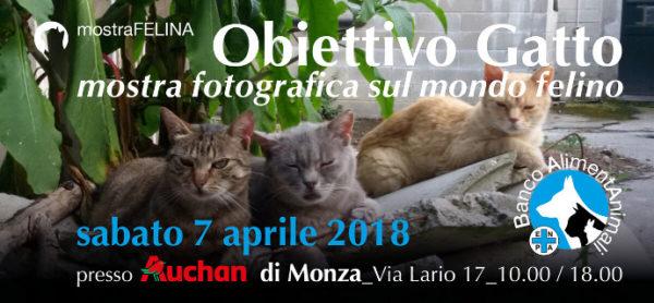 Sabato 7 aprile, esposizione fotografica e raccolta cibo all'Auchan di Monza.