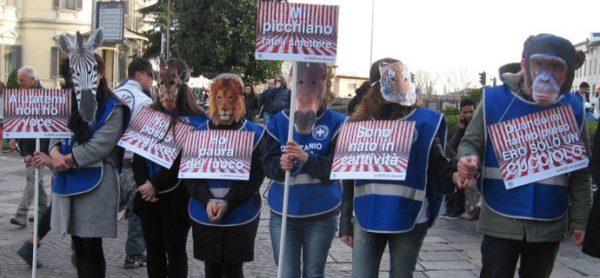 In piazza per dire STOP animali nei circhi