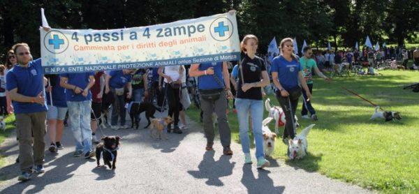 """Domenica 20 maggio tutti in marcia per la """"4 Passi a 4 Zampe""""!"""