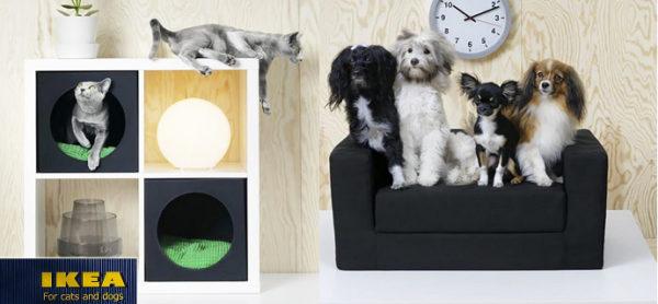 IKEA ed ENPA insieme per aiutare i quattrozampe