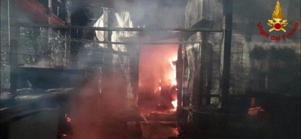 Incendio al gattile di Rho, la solidarietà di ENPA