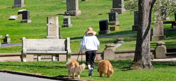 Monza, quattrozampe al cimitero? Da oggi si può!