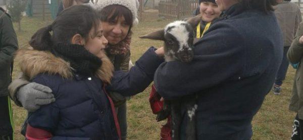 Uscite didattiche: il rispetto per gli animali si impara al rifugio di Monza