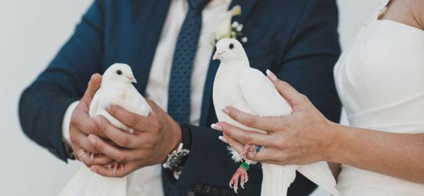 Tempo di matrimoni - NOal lancio delle colombe!