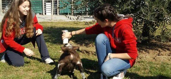 Aiutiamo l'ENPA! Una splendida iniziativa da parte di tre giovanissime zoofile!