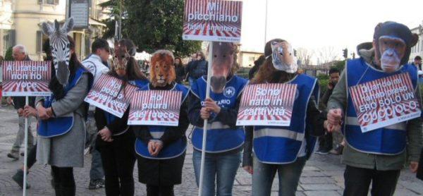Sabato 16 marzo, ENPA in piazza per sensibilizzare i cittadini sullo sfruttamento degli animali nei circhi.