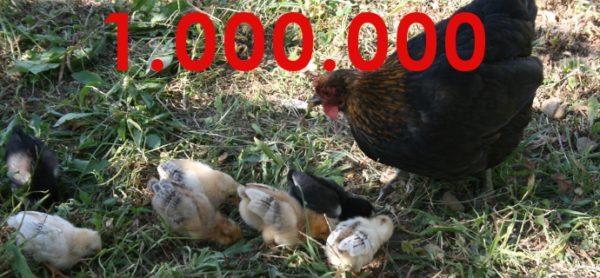 #End the cage age: raggiunto il milione di firme!